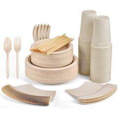 350-pc-disposable-compostable-picnic set